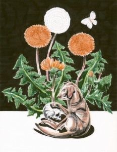 Small Dog, Dandelions, Butterfly. Grant Huang, 2015.